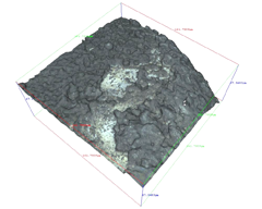 3D Optical image of highly corroded silver surface